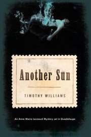 Book Beginning – ANOTHER SUN by Timothy Williams
