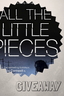 Book Giveaway - All The Little Pieces by Jilliane Hoffman