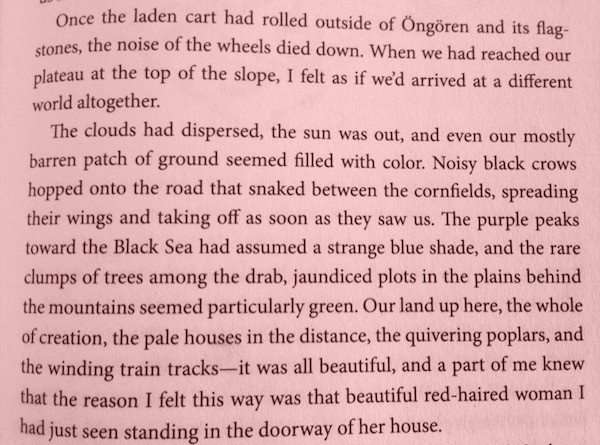 The Red Haired Woman Quote, Orhan Pamuk