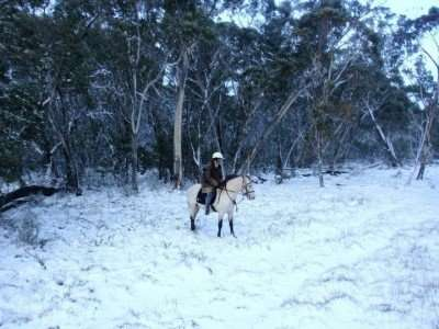 High Country Winter Barry the horse and Lara Fanning