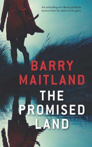 The Promised Land - Barry Maitland - Favourite Reads of 2019