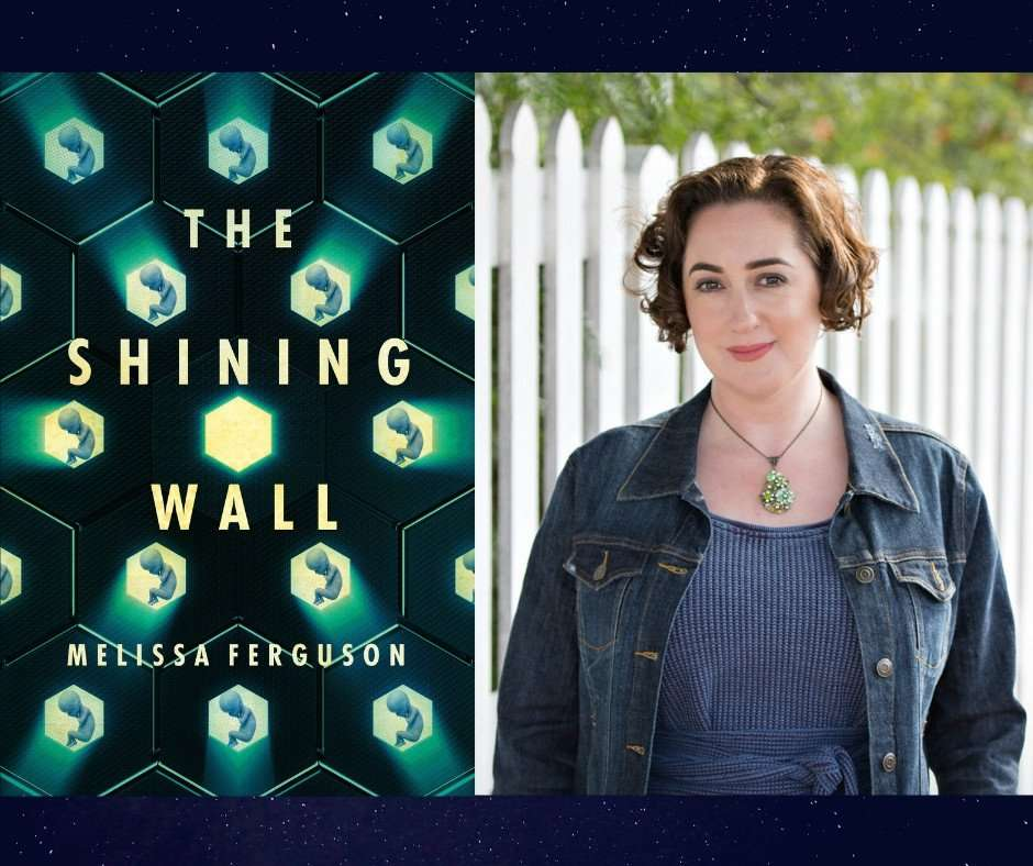 The Shining Wall - Melissa Ferguson
