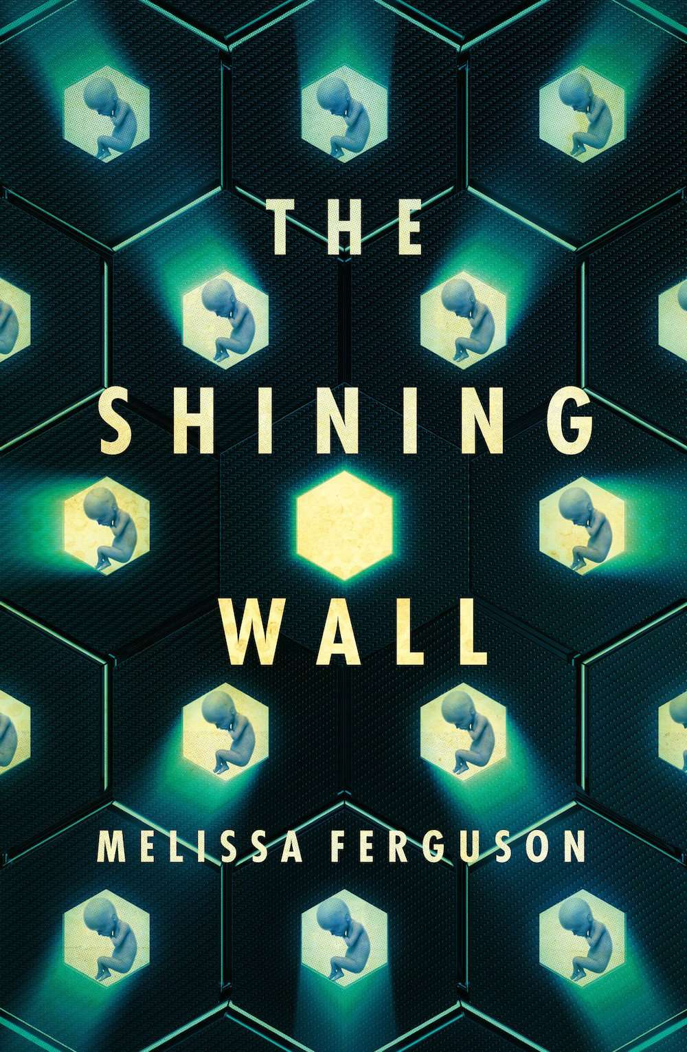 The Shining Wall by Melissa Ferguson