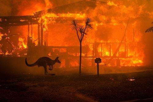 The Australia Wildfires in Pictures Matthew Abbott for The New York Times 1